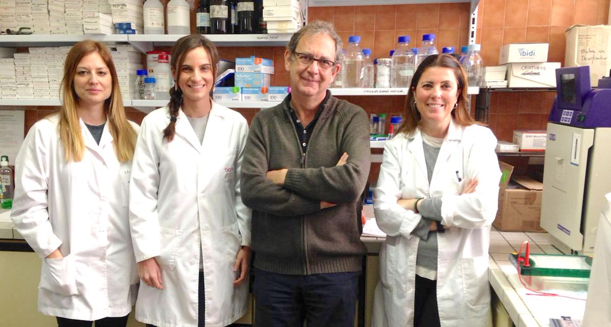 Identifican dos linajes de células madre hematopoyéticas #MBCMnews